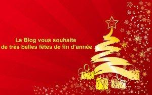 Voeux 2013 ! blog-fetes-1024x640-300x187